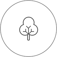 icon eco01